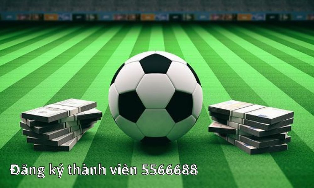 Đăng ký thành viên 5566688