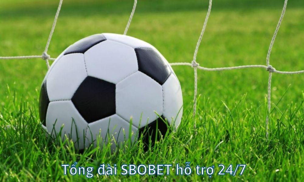 Tổng đài SBOBET hỗ trợ 24/7