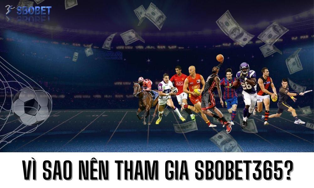 Vì sao nên tham gia Sbobet365